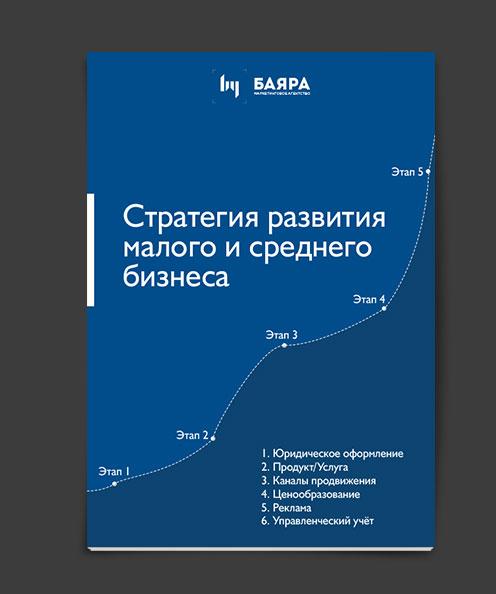 Стратегия развития малого и среднего бизнеса